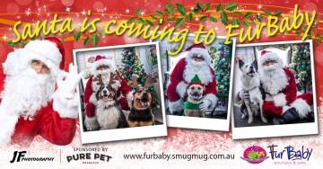 Santa Dog Photos