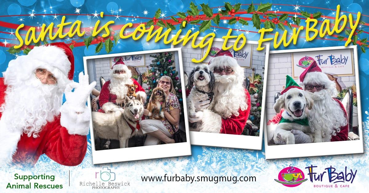FurBaby Santa Paws Banner