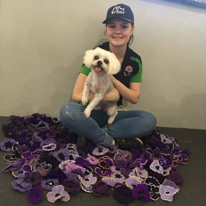 Chloe And Souvaki With Purple Poppies, FurBaby