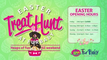 Easter Treat Hunt for dogs in Perth