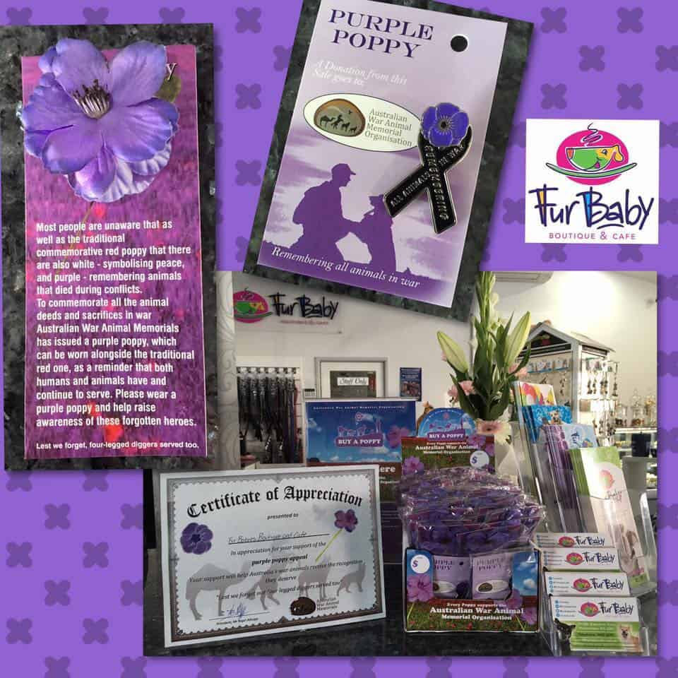 FBBC Purple Poppy, FurBaby