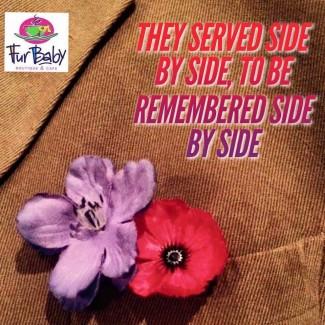 Purple Poppy War animals memorial