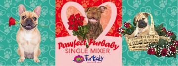 Singles mixer FurBaby