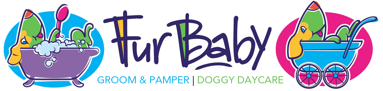 false, FurBaby | Grooming & Doggy Daycare | Perth | Westminster | Osborne Park | Balcatta | Yokine |  Dianella