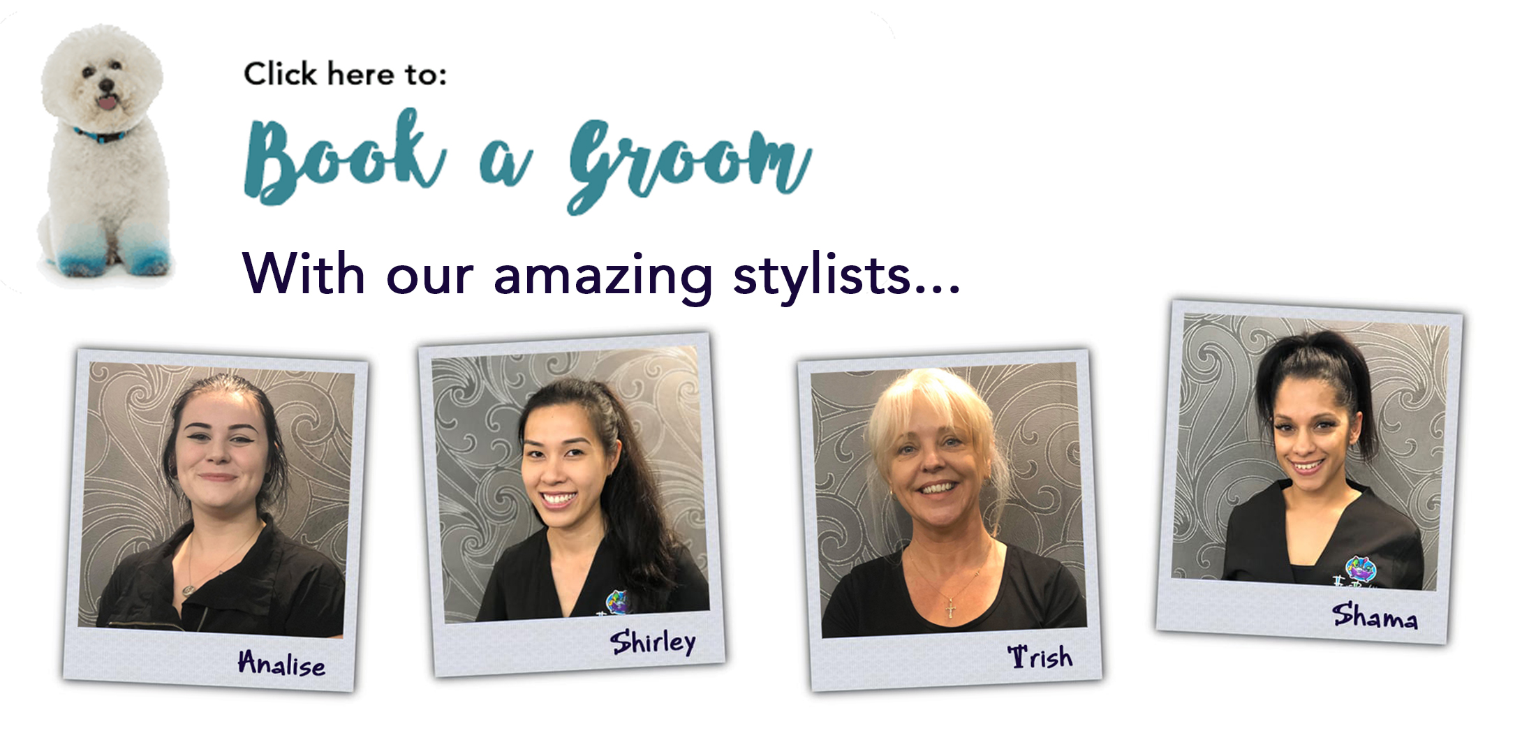 Book with our stylists