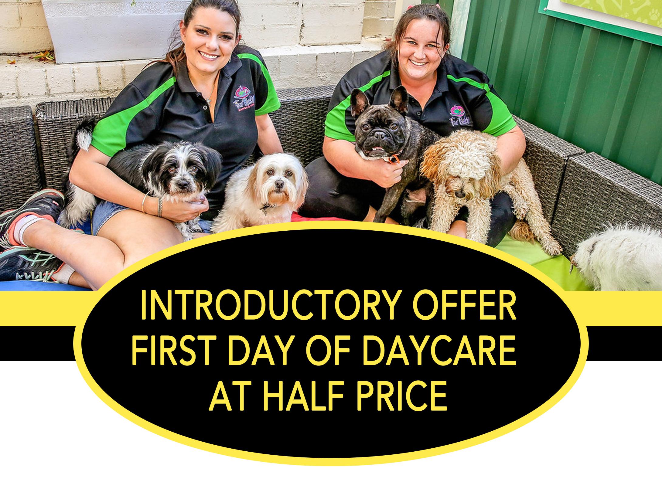 Daycare Offer Half Price