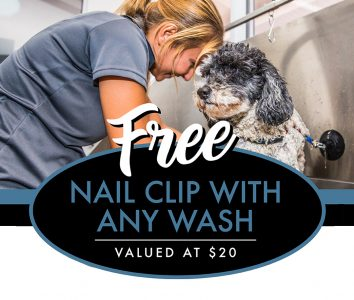 EMAILGrooming Offer 2020 05 May 2