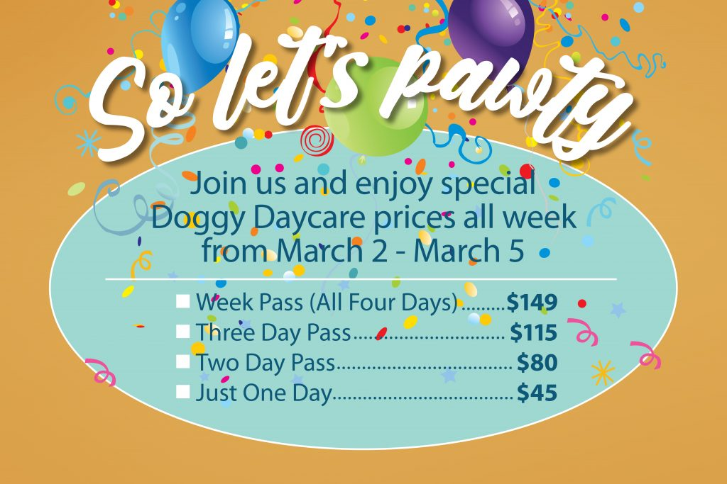 Daycare Pawty Opening Prices