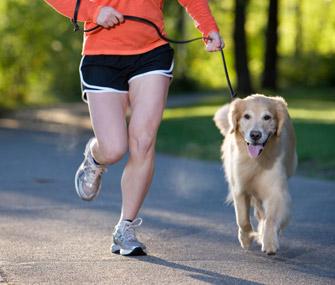 running with dog iStock 000014229275 335sm6313